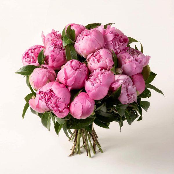 Brassée de pivoines roses